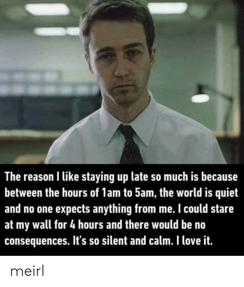 no consequences: The reason I like staying up late so much is because  between the hours of 1am to 5am, the world is quiet  and no one expects anything from me. I could stare  at my wall for 4 hours and there would be no  consequences. It's so silent and calm. I love it. meirl
