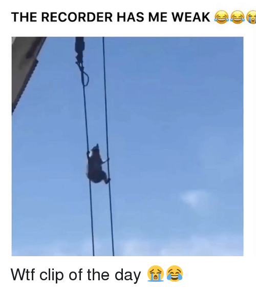 recorder: THE RECORDER HAS ME WEA Wtf clip of the day 😭😂