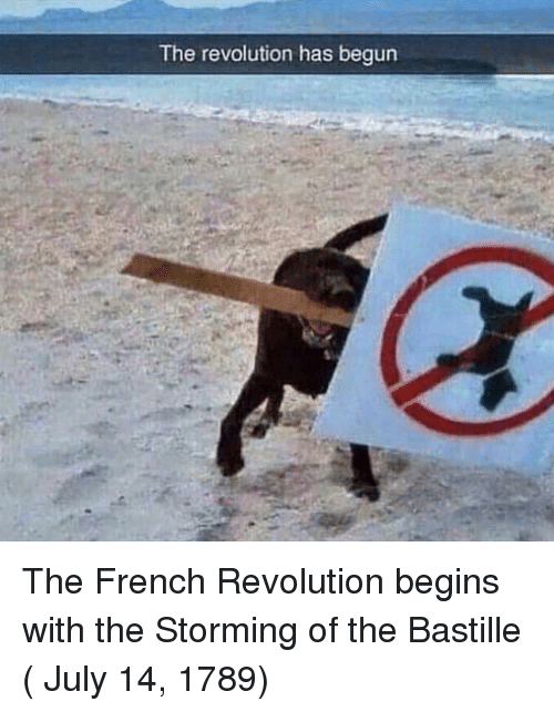 bastille: The revolution has begun The French Revolution begins with the Storming of the Bastille ( July 14, 1789)