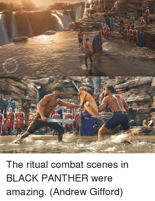 Memes, Black, and Black Panther: The ritual combat scenes in BLACK PANTHER were amazing.  (Andrew Gifford)