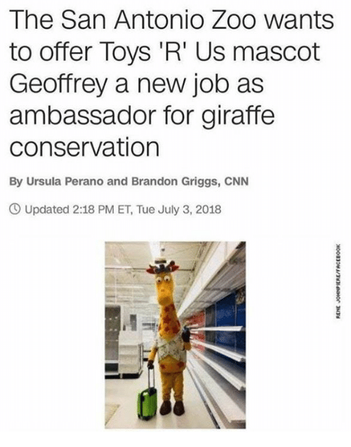 cnn.com, Toys R Us, and Giraffe: The San Antonio Zoo wants  to offer Toys 'R' Us mascot  Geoffrey a new job as  ambassador for giraffe  conservation  By Ursula Perano and Brandon Griggs, CNN  Updated 2:18 PM ET, Tue July 3, 2018