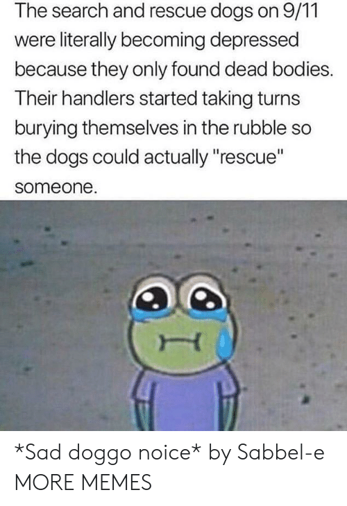 "9/11, Bodies , and Dank: The search and rescue dogs on 9/11  were literally becoming depressed  because they only found dead bodies.  Their handlers started taking turns  burying themselves in the rubble so  the dogs could actually ""rescue""  someone. *Sad doggo noice* by Sabbel-e MORE MEMES"