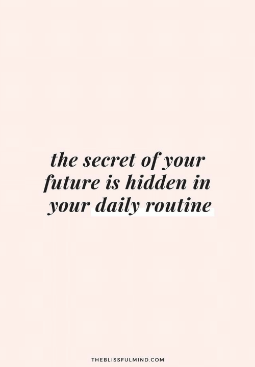 routine: the secret of your  future is hidden in  your daily routine  THEBLISSFULMIND.COM
