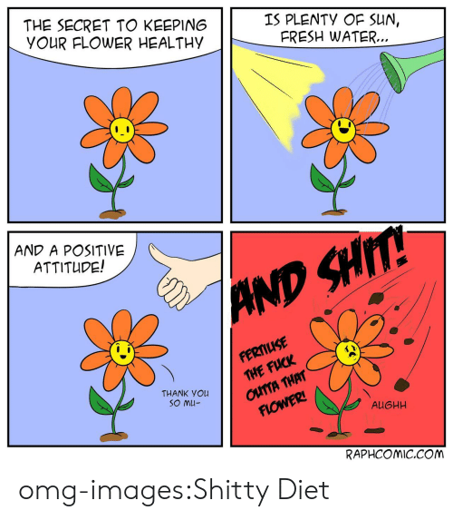 Fresh, Omg, and Tumblr: THE SECRET TO KEEPING  YOUR FLOWER HEALTHY  IS PLENTY OF SUN,  FRESH WATER..  AND A POSITIVE  ATTITUPE!  FERMIUSE  THE FUCK  A THAT  THANK You  AUGHH  RAPHCOMIC.COM omg-images:Shitty Diet