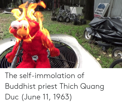 buddhist: The self-immolation of Buddhist priest Thich Quang Duc (June 11, 1963)