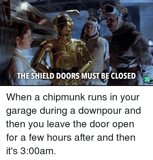 The Shield: THE SHIELD DOORS MUST BE CLOSED When a chipmunk runs in your garage during a downpour and then you leave the door open for a few hours after and then it's 3:00am.