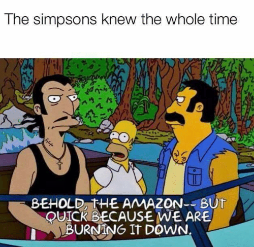 Amazon, Memes, and The Simpsons: The simpsons knew the whole time  BEHOLD, THE AMAZON--BUT  QUICKBECAUSE WE ARE  BURNING IT DOWN.