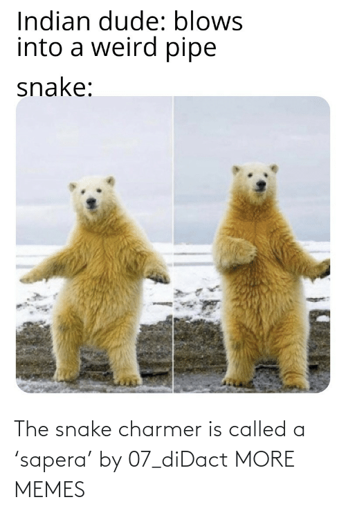 called: The snake charmer is called a 'sapera' by 07_diDact MORE MEMES