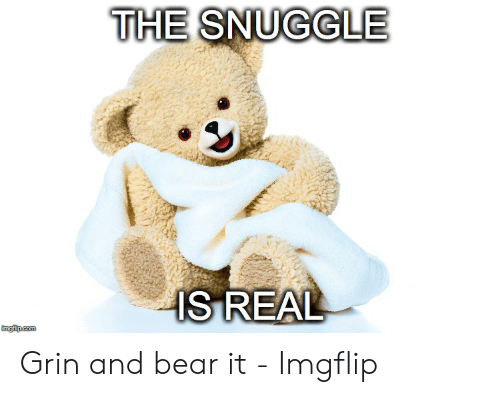 Snuggle Bear Meme: THE  SNUGGLE  IS REAL Grin and bear it - Imgflip