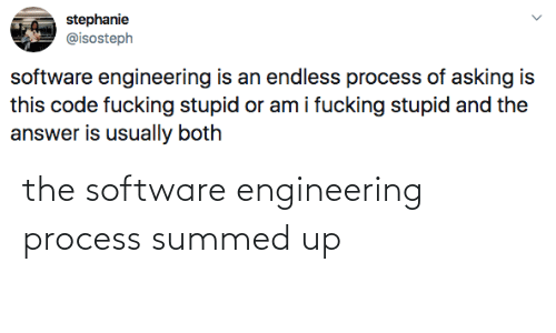 Process: the software engineering process summed up