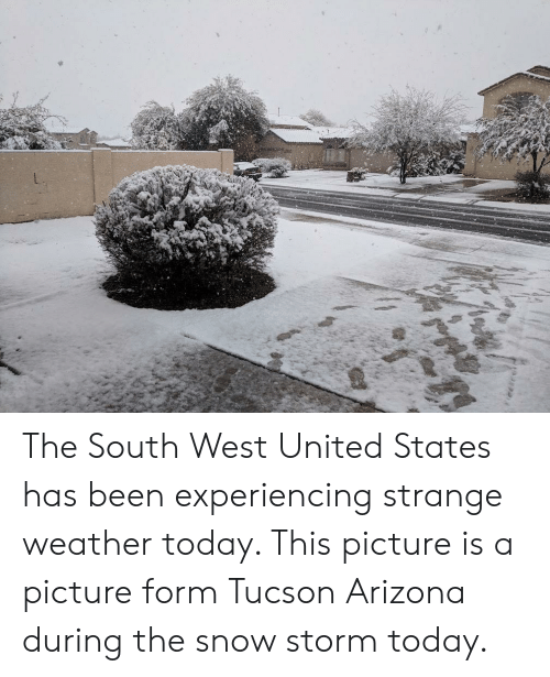 tucson arizona: The South West United States has been experiencing strange weather today. This picture is a picture form Tucson Arizona during the snow storm today.