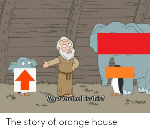 House: The story of orange house