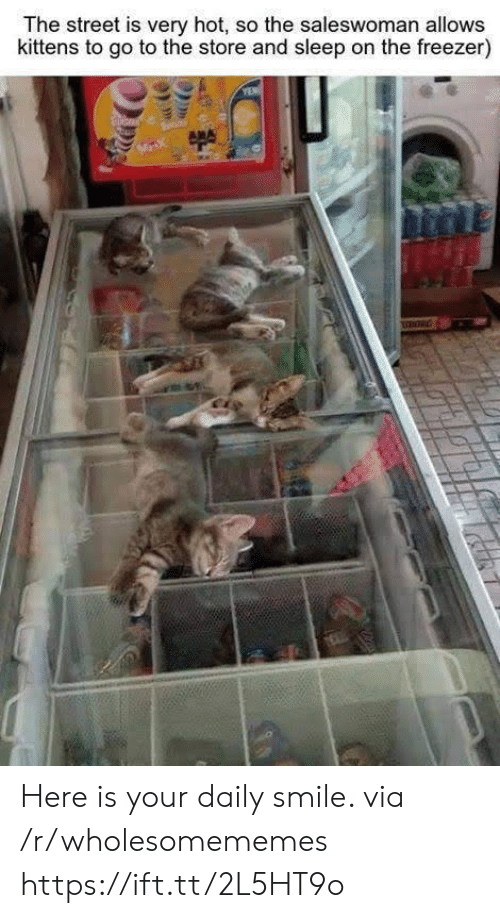 Kittens: The street is very hot, so the saleswoman allows  kittens to go to the store and sleep on the freezer)  MX Here is your daily smile. via /r/wholesomememes https://ift.tt/2L5HT9o