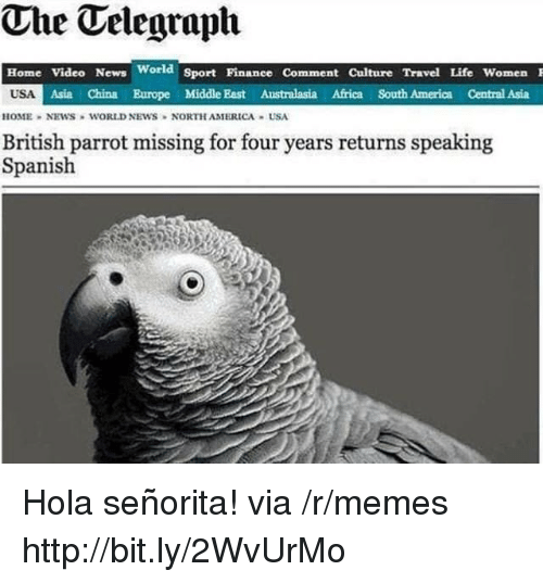 Africa, America, and Life: The Telegraph  Home Video News World Sport Pinanee Comment Culture Travel Life Women  USA  Asia China Europe Middle East Australasia Africa South America Central Asia  HOME NEWS WORLD NEWS NORTH AMERICA USA  British parrot missing for four years returns speaking  Spanish Hola señorita! via /r/memes http://bit.ly/2WvUrMo