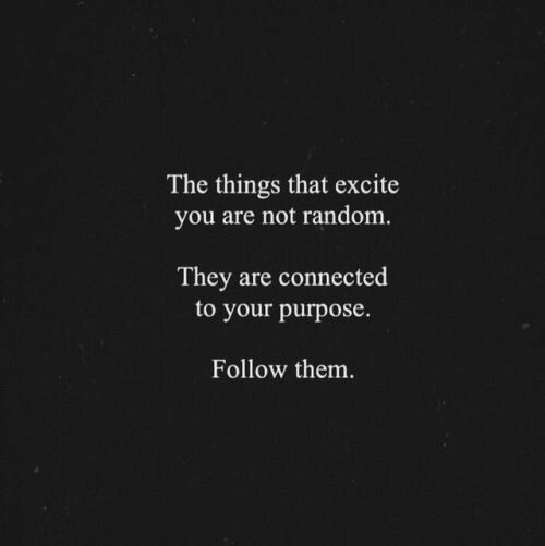 Excite: The things that excite  you are not random  They are connected  to your purpose.  Follow them