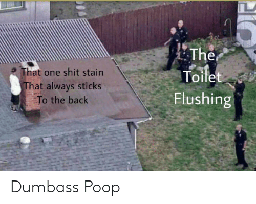 Poop, Reddit, and Shit: The  Toilet  That one shit stain  That always sticks  Flushing  To the back Dumbass Poop