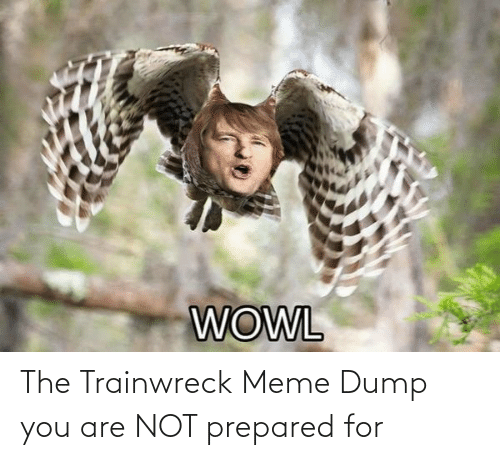Are Not: The Trainwreck Meme Dump you are NOT prepared for