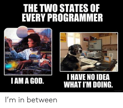 Idea What: THE TWO STATES OF  EVERY PROGRAMMER  T HAVE NO IDEA  WHAT I'M DOING.  I AM A GOD. I'm in between