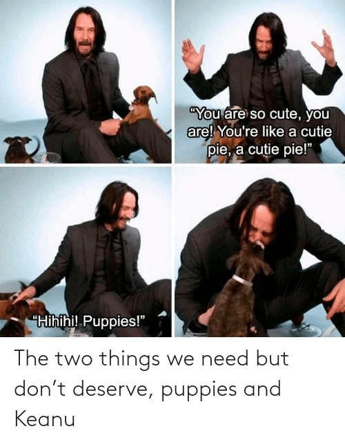 two: The two things we need but don't deserve, puppies and Keanu