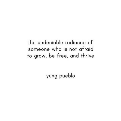 Yung: the undeniable radiance of  someone who is not afraid  to grow, be free, and thrive  yung pueblo