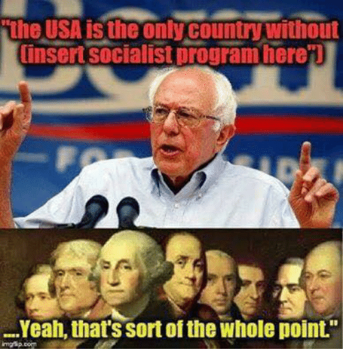 """Insertions: the USA is the only country without  insert socialist program here'l  Yeah, that's sort of the whole point."""""""