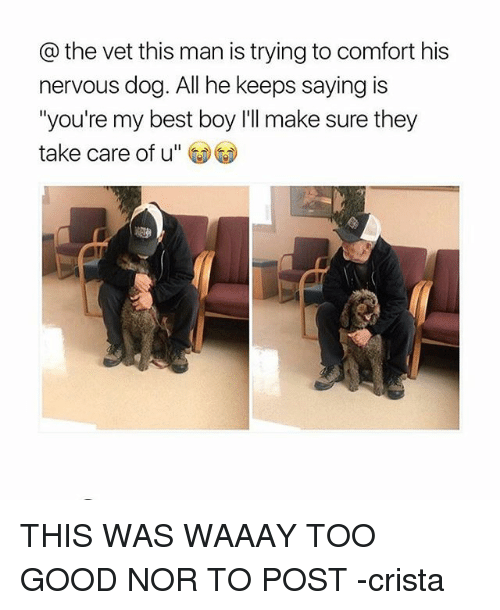 vetting: the vet this man is trying to comfort his  nervous dog. All he keeps saying is  you're my best boy l'll make sure they  take care of u THIS WAS WAAAY TOO GOOD NOR TO POST -crista