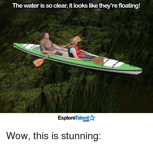 talent explore: The water is so clear, it looks like they're floating!  Talent  Explore Wow, this is stunning: