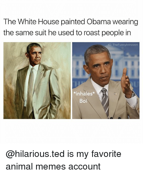 Roastes: The White House painted Obama wearing  the same suit he used to roast people in  IG: The Funnylntrovert  nhales  Boi @hilarious.ted is my favorite animal memes account
