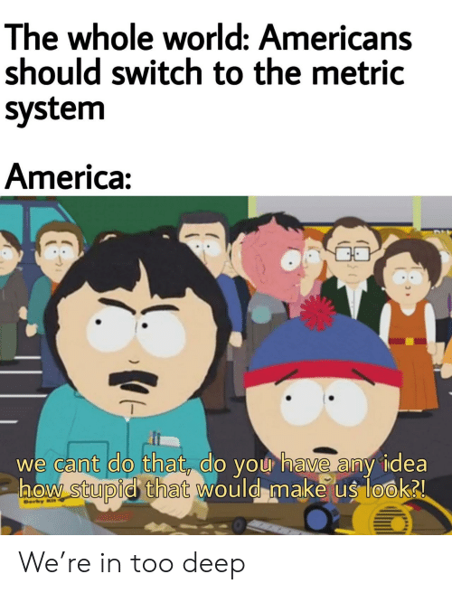 ber: The whole world: Americans  should switch to the metric  system  America:  we cant do that, do you have any idea  aow stupid that would make us look2  Ber  ) We're in too deep