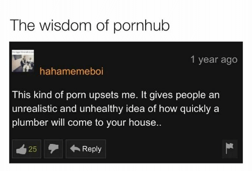 Dank, Pornhub, and House: The wisdom of pornhub  1 year ago  hahamemeboi  This kind of porn upsets me. It gives people an  |unrealistic and unhealthy idea of how quickly a  plumber will come to your house..  Reply  25