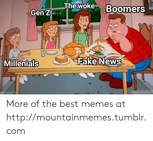 Fake, Memes, and News: The woke Boomers  Gen Z  Fake News  Millenials More of the best memes at http://mountainmemes.tumblr.com