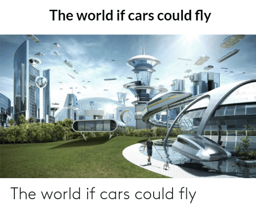 fly: The world if cars could fly