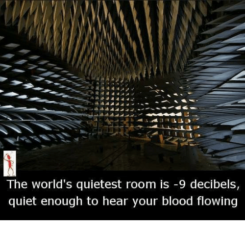 decibels: The world's quietest room is -9 decibels,  quiet enough to hear your blood flowing