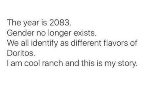 Memes, Cool, and 🤖: The year is 2083.  Gender no longer exists.  We all identify as different flavors of  Doritos.  I am cool ranch and this is my story.