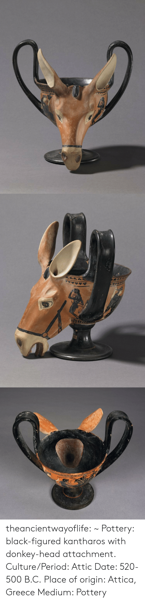 Donkey, Head, and Period: theancientwayoflife:  ~ Pottery: black-figured kantharos with donkey-head attachment. Culture/Period: Attic Date: 520-500 B.C. Place of origin: Attica, Greece Medium: Pottery
