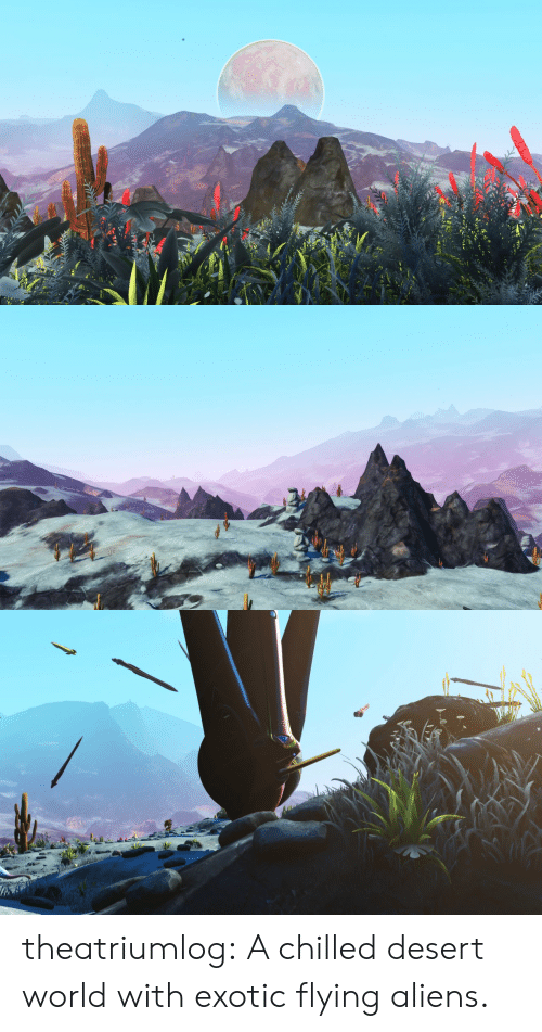 chilled: theatriumlog:  A chilled desert world with exotic flying aliens.