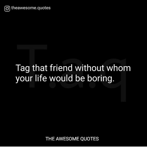 life without friends will be boring 0 1 get out of your damn comfort zone already you know why your life is boring it's because you're boring okay jk, maybe that was a little harsh but really, you need to stop being afraid of everything.