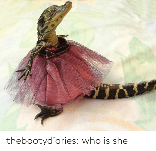 Tumblr, Blog, and Http: thebootydiaries:  who is she