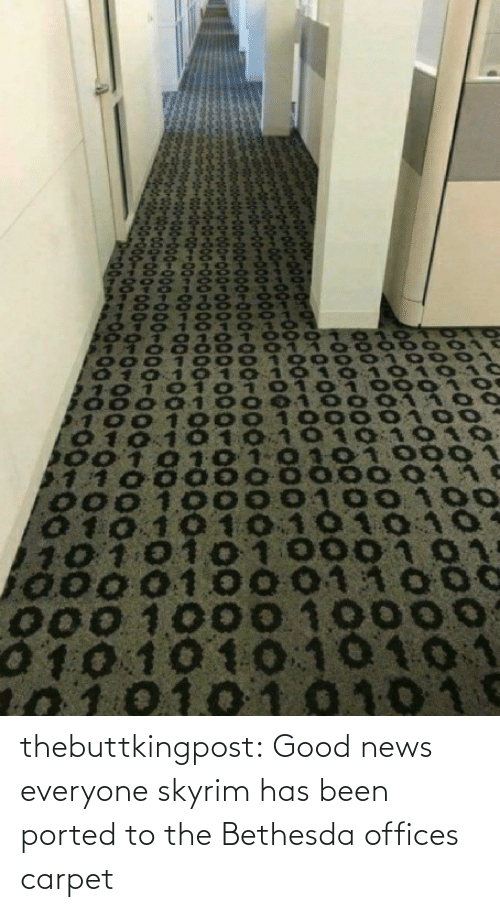 carpet: thebuttkingpost: Good news everyone skyrim has been ported to the Bethesda offices carpet