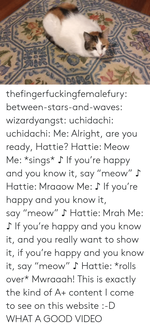 "Good Video: thefingerfuckingfemalefury:  between-stars-and-waves:  wizardyangst:  uchidachi:   uchidachi:  Me: Alright, are you ready, Hattie? Hattie: Meow Me: *sings*   ♪  If you're happy and you know it, say ""meow""  ♪   Hattie: Mraaow Me:   ♪  If you're happy and you know it, say ""meow""  ♪   Hattie: Mrah Me:   ♪  If you're happy and you know it, and you really want to show it, if you're happy and you know it, say ""meow""  ♪   Hattie: *rolls over* Mwraaah!    This is exactly the kind of A+ content I come to see on this website  :-D  WHAT A GOOD VIDEO"