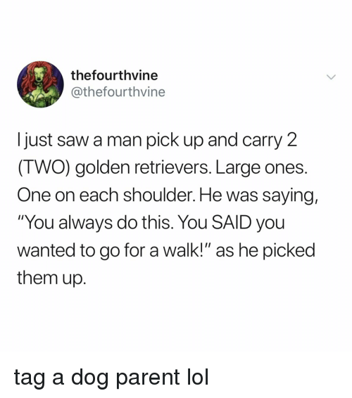 """Lol, Saw, and Relatable: thefourthvine  @thefourthvine  I just saw a man pick up and carry 2  (TWO) golden retrievers. Large ones  One on each shoulder. He was saying,  """"You always do this. You SAID you  wanted to go for a walk!"""" as he picked  them up. tag a dog parent lol"""