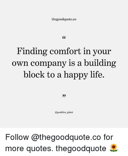 Life, Memes, and Happy: thegoodquote.co  Finding comfort in your  own company is a building  block to a happy life.  @positive plant Follow @thegoodquote.co for more quotes. thegoodquote 🌻