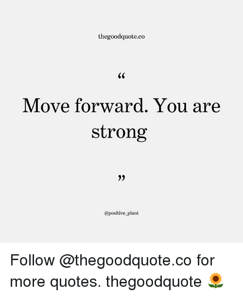 Memes, Quotes, and Strong: thegoodquote.co  Move forward. You are  strong  @positive plant Follow @thegoodquote.co for more quotes. thegoodquote 🌻