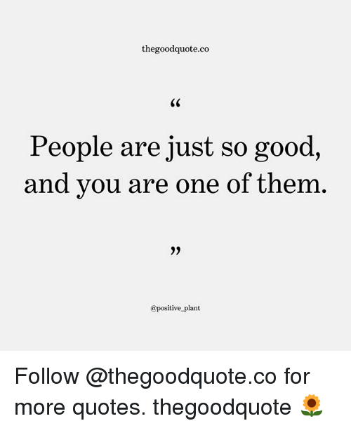 Memes, Good, and Quotes: thegoodquote.co  People are just so good,  and vou are one of them,  @positive plant Follow @thegoodquote.co for more quotes. thegoodquote 🌻