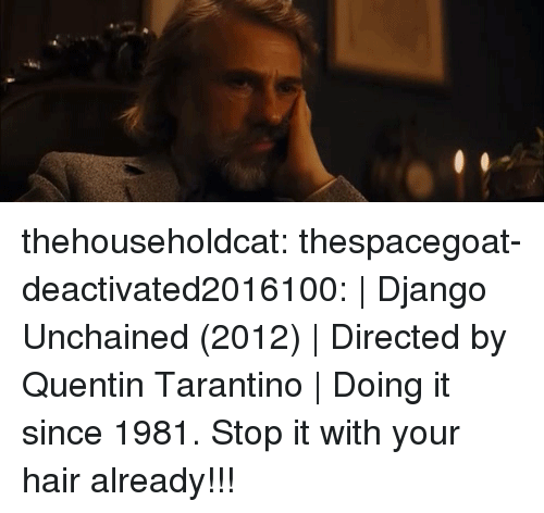 Django Unchained: thehouseholdcat:   thespacegoat-deactivated2016100:  |Django Unchained(2012)|Directed by Quentin Tarantino|  Doing it since 1981.  Stop it with your hair already!!!