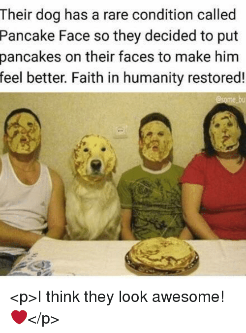 faith in humanity restored: Their dog has a rare condition called  Pancake Face so they decided to put  pancakes on their faces to make him  feel better. Faith in humanity restored! <p>I think they look awesome! ❤️</p>