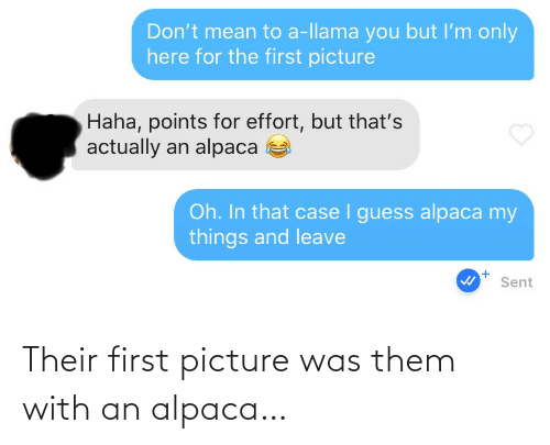 picture: Their first picture was them with an alpaca…