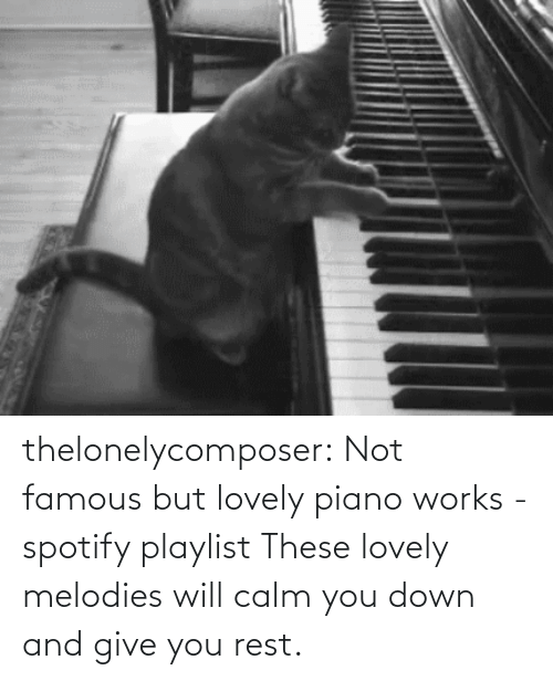 calm: thelonelycomposer: Not famous but lovely piano works -spotify playlist These lovely melodies will calm you down and give you rest.