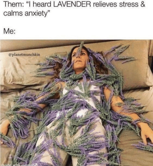"Anxiety, Stress, and Them: Them: ""I heard LAVENDER relieves stress &  calms anxiety""  Me:  @planetmunchkin  made with mematis"