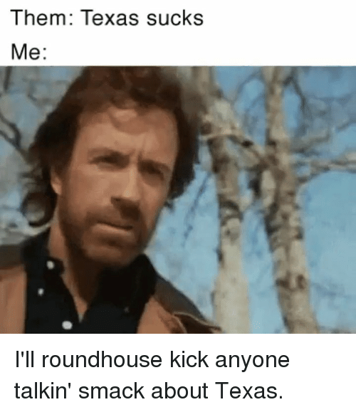 roundhouse: Them: Texas sucks  Me I'll roundhouse kick anyone talkin' smack about Texas.